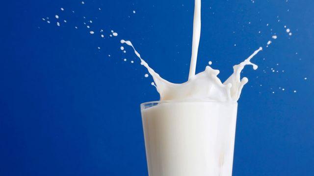Ученые: от употребления молока больше вреда, чем пользы